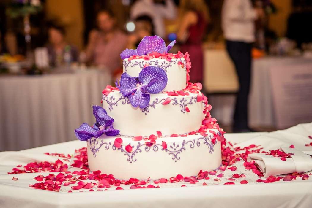 Фото 9196732 в коллекции Свадебный декор - Организатор Столярова Наталья