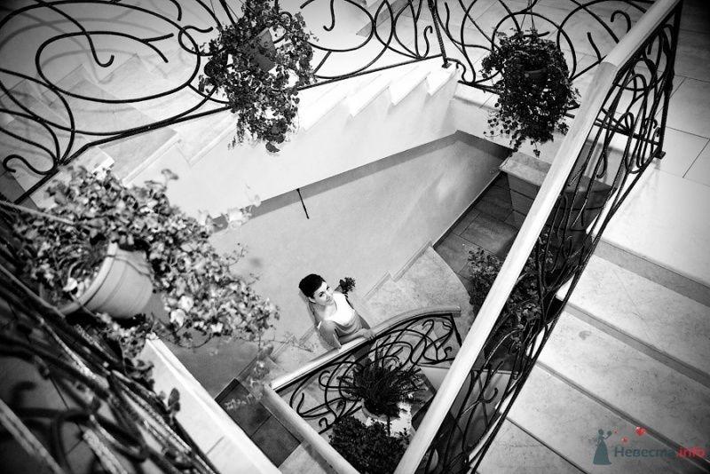 Фото 57893 в коллекции Свадебные фотографии - Фотограф Мария Ширяева (KAIOSHK)