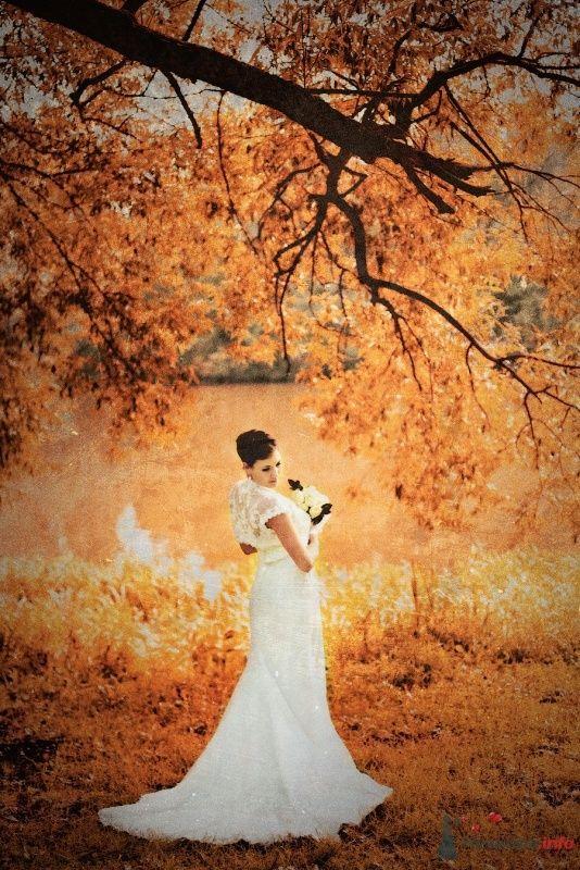 Фото 57912 в коллекции Свадебные фотографии