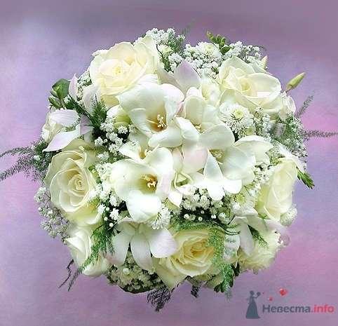 Фото 68171 в коллекции Мои фотографии - Невестушка
