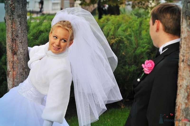 Жених и невеста смотрят друг на друга на фоне зеленых кустов - фото 57470 blondperl