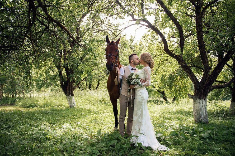 Фото 16928938 в коллекции Рустикальная свадьба - Студия декора Юлии Капраловой