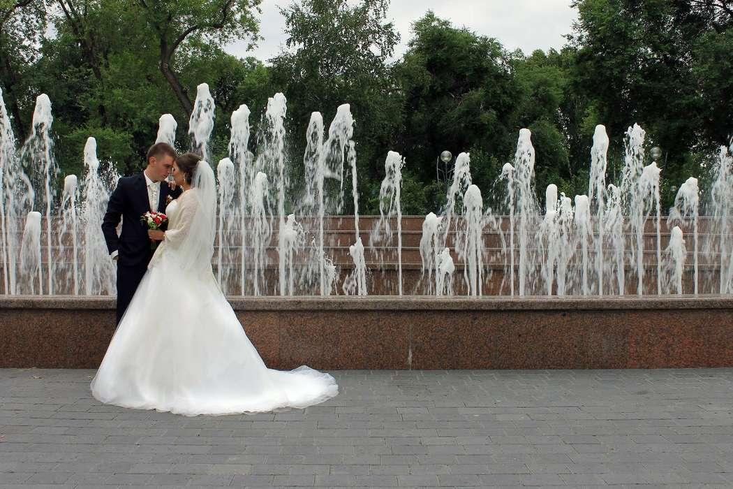 Фото 6004881 в коллекции Портфолио - Фотограф Шахова Александра