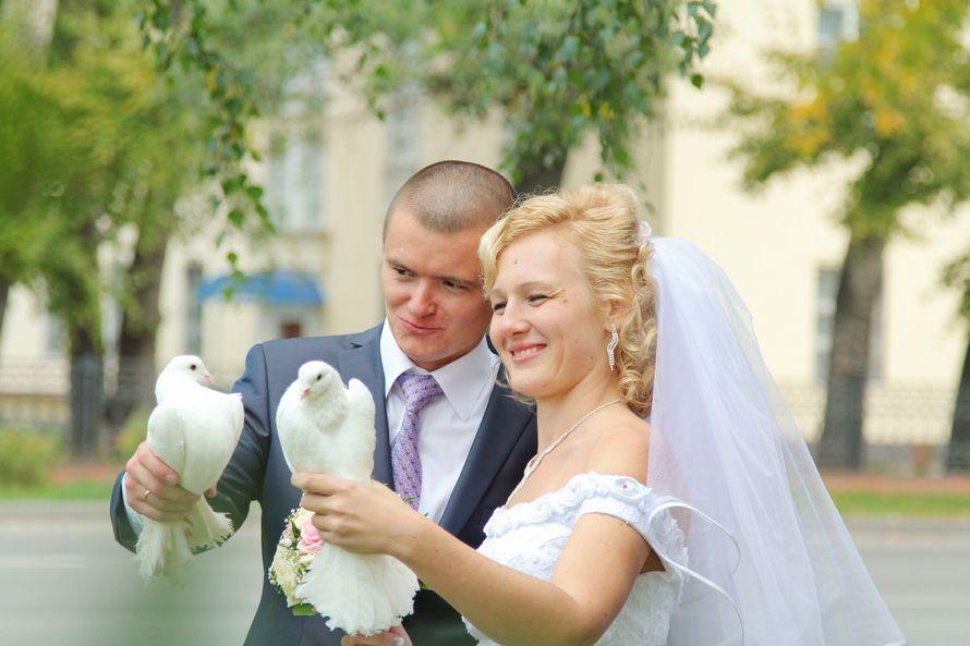 Фото 9636806 в коллекции Свадебные фоторгафии - Фотограф  и видеограф Алексей Перов