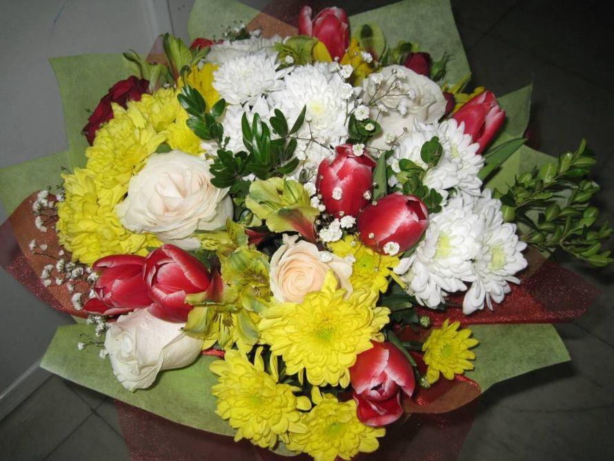 Букет из 47 тюльпанов и хризантем, цветы челябинск цветов