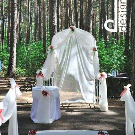 Регистрация брака в сосновом лесу