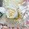 Бутоньерка из кремовых роз