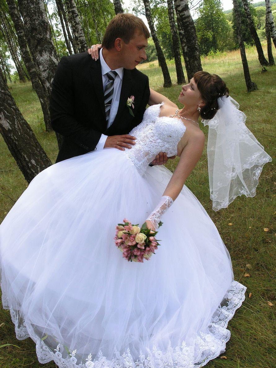 Фото 10075680 в коллекции Портфолио - Видео и фотосъемка Виктор Сафонов
