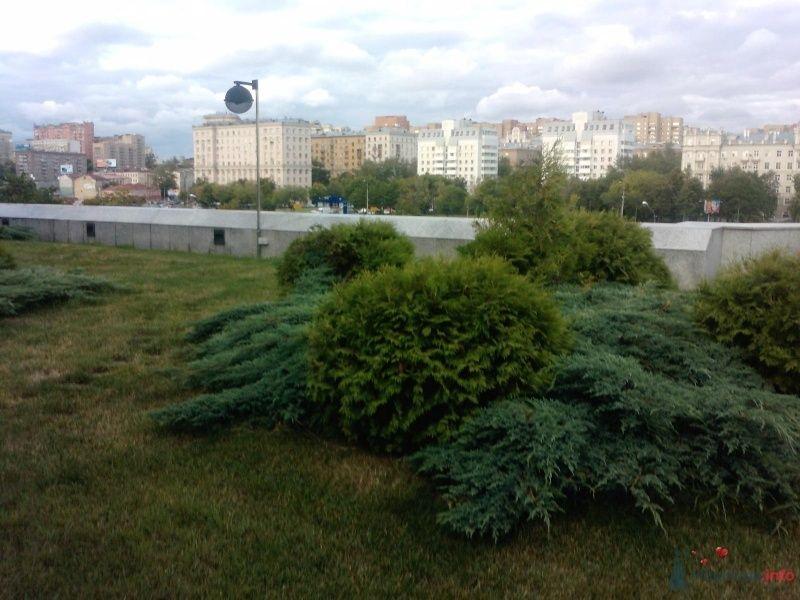 смотровая площадка - природа - фото 36332 Нюшка Менделеева
