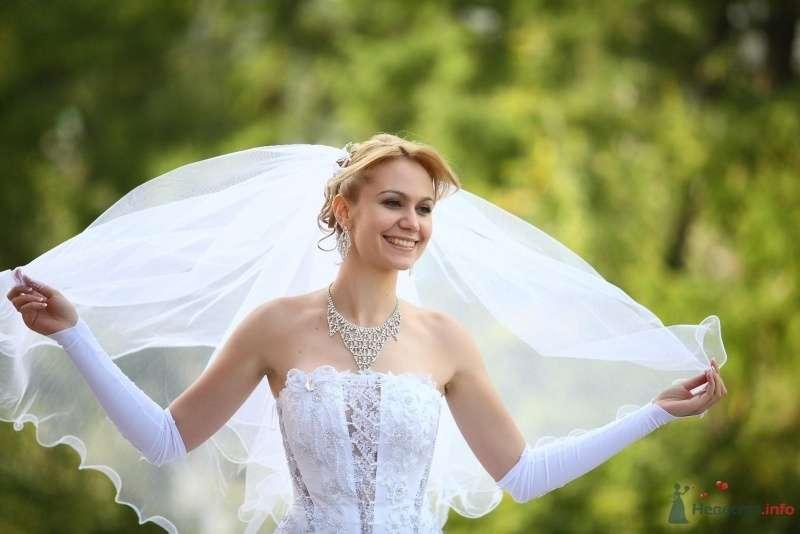 Невеста в белом платье держит в руках фату - фото 60888 peredel