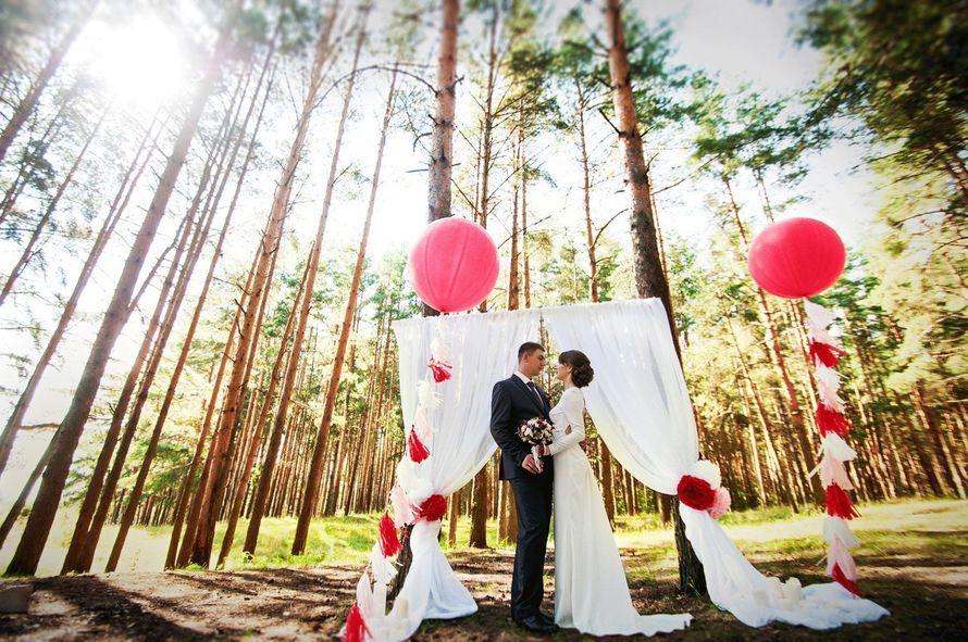 """Фото 10200256 в коллекции Свадебное агенство """"Счастливые люди"""" - Свадебное агенство """"Счастливые люди"""""""