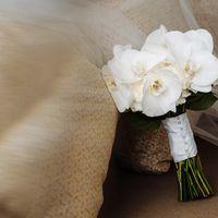 Букет невесты с белыми орхидеями