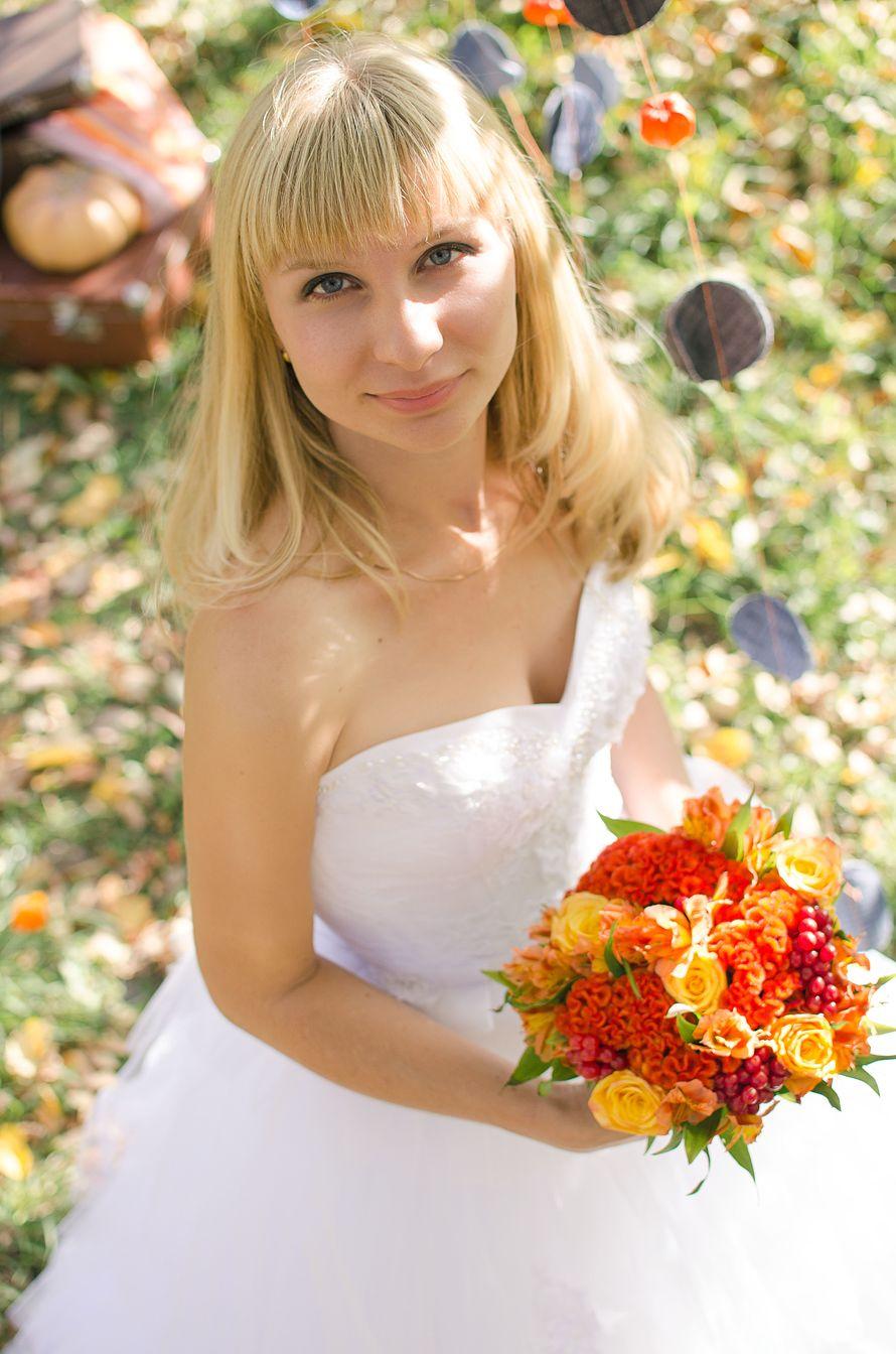 Фото 10453848 в коллекции Портфолио - Мирабелла свадебное агентство
