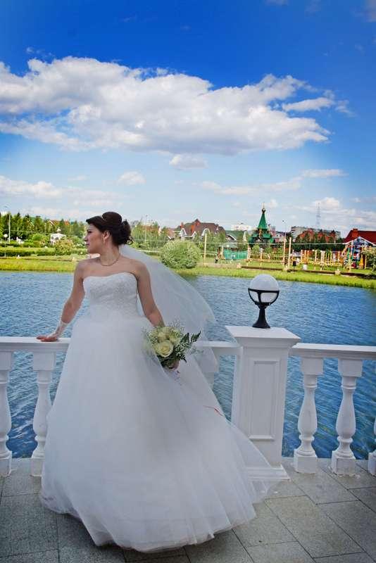 Фото 11046774 в коллекции Фото,Видео.. - Фото, Видеосъёмка Сергей Романов
