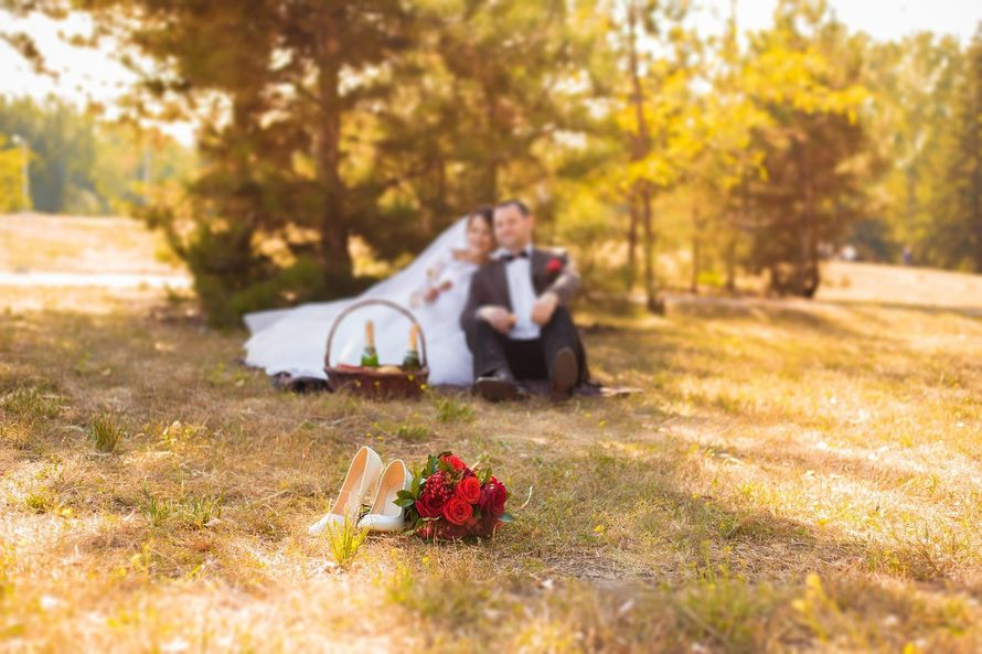 Фото 10983862 в коллекции Портфолио свадебное - Фотограф Наталья Нагорных