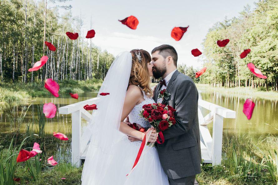 Свадебный фотограф Дмитрий Новиков,  89170853510 - фото 16638086 Фотограф Дмитрий Новиков