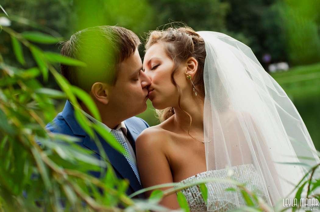 изображений красивый отзыв фотографу на свадьбе довольно