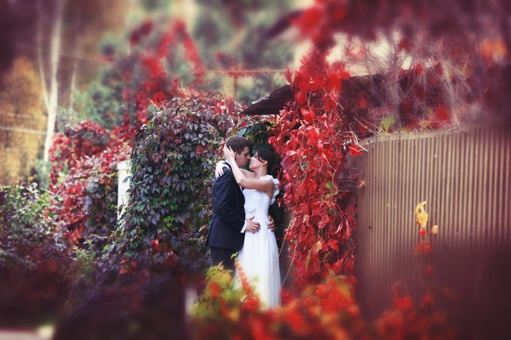 Фотограф на свадьбу: Калугина Ольга от 3000. руб. час. - фото 15294538 Фотограф Калугина Ольга