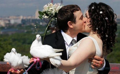 Фото 1477 в коллекции Жених и невеста=)