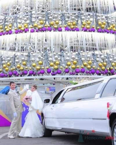 Фото 9826 в коллекции Зимняя свадьба Петра и Натальи  - Dima Solovey - фотограф