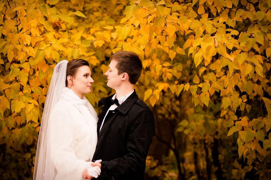 Фото 7269930 в коллекции Свадьбы  2014 - Фотограф Наталья Канищева
