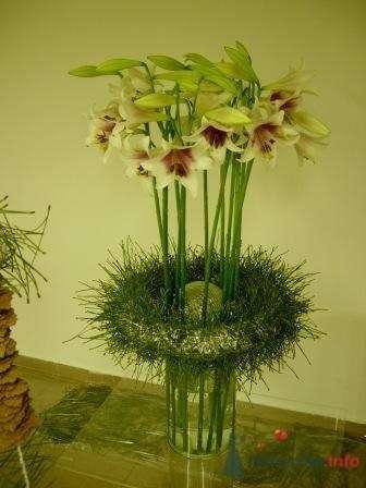 Напольная композиция с лилиями - фото 1119 Флорист-дизайнер Елена