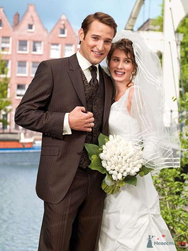 """Классический коричневый костюм """"тройка"""" с коричневыми узорчатыми  галстуком и жилеткой и белой рубашкой - фото 66551 dobro"""