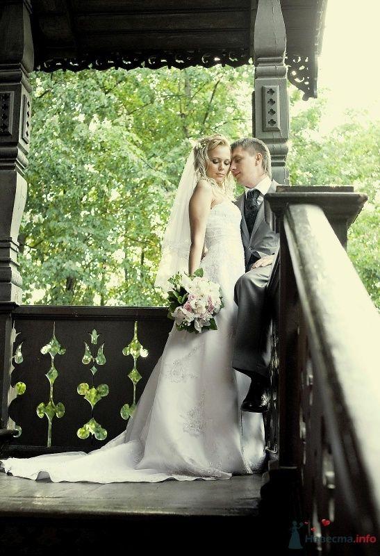 Фото 50702 в коллекции Свадьба