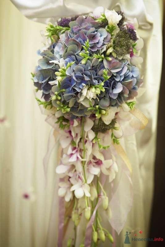 Фото 62341 в коллекции Wedding Day - Busic