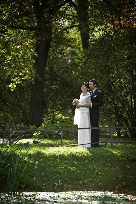Фото 62389 в коллекции Wedding Day - Busic