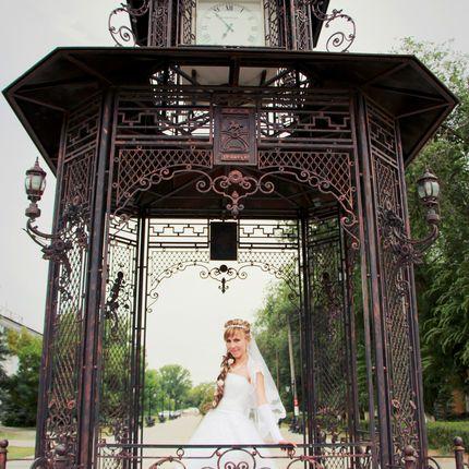 Фотосъёмка свадьбы(неполный день)