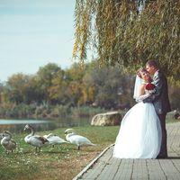 Свадебный фотограф Виктор Губарев тел: 8 (918) 931 44 77