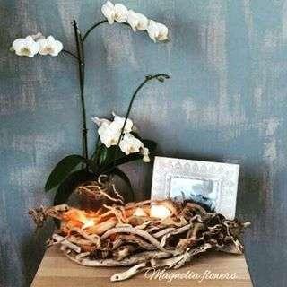 "Фото 11540872 в коллекции Портфолио - Студия декора и флористики ""Magnolia flowers"""