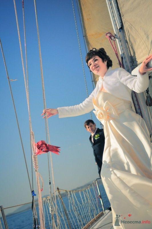 Фото 57628 в коллекции Наша свадьба глазами Катерины Черкашиной