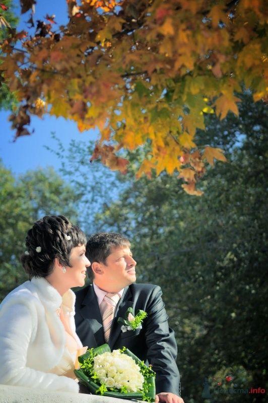Фото 57655 в коллекции Наша свадьба глазами Катерины Черкашиной - Солнышонок