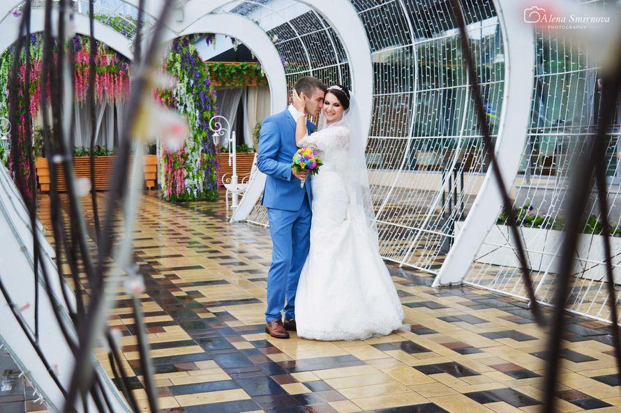 Фото 11862502 в коллекции Wedding (2) - Фотограф Алена Смирнова