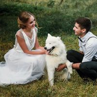 Нестандартные свадебные фотосессии с животными!!!!