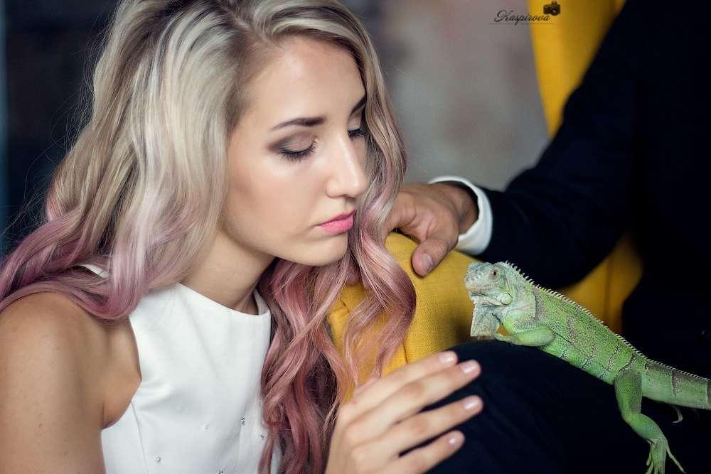"""Нестандартные свадебные фотосессии с животными!!!! - фото 11973870 """"Сто зверей"""" - агентство дрессированных животных"""
