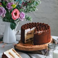 Тирсмису Классический и великолепный торт «Тирамису», приготовленный на основе итальянского сыра «Маскарпоне» в сочетании с бисквитными палочками «савоярди», пропитанными свежесваренной порцией эспрессо.