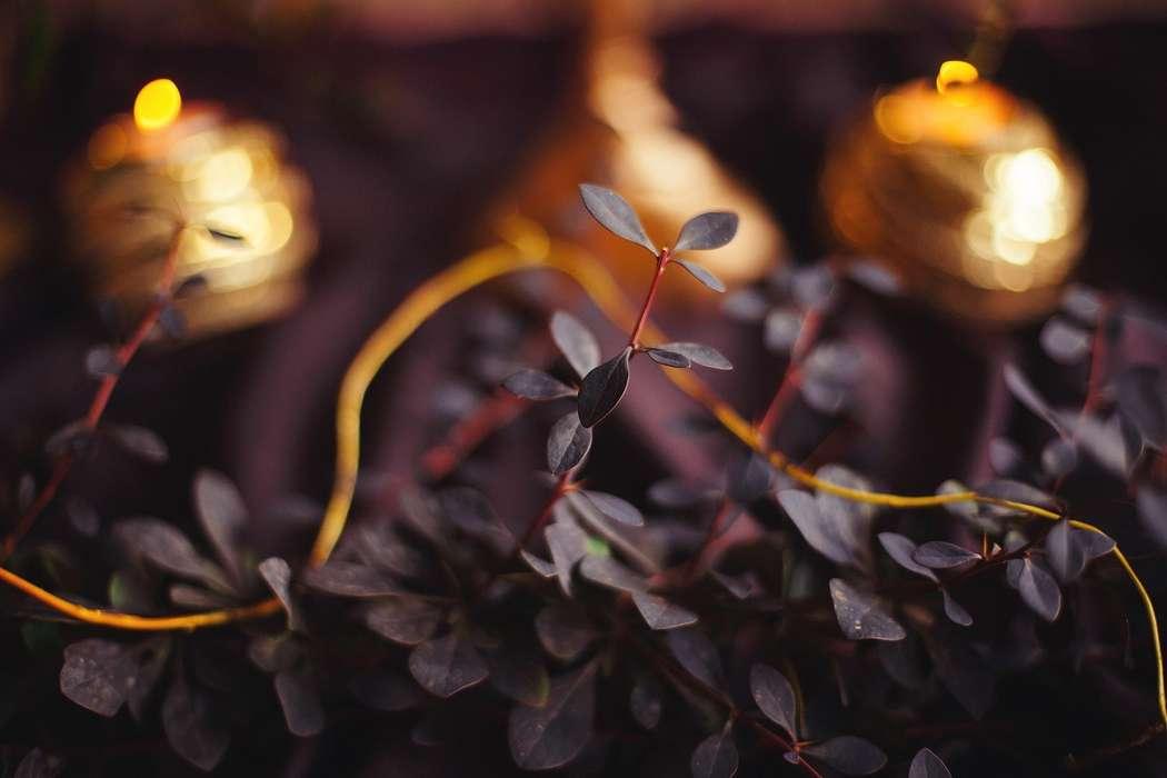 Фото 12365744 в коллекции Любовь с оттенком марсала - Свадебное агентство Инны Бажан