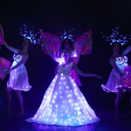 4 номера в составе шоу-программы + постановка свадебного танца