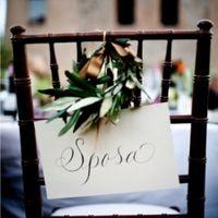 olive tree wedding chair