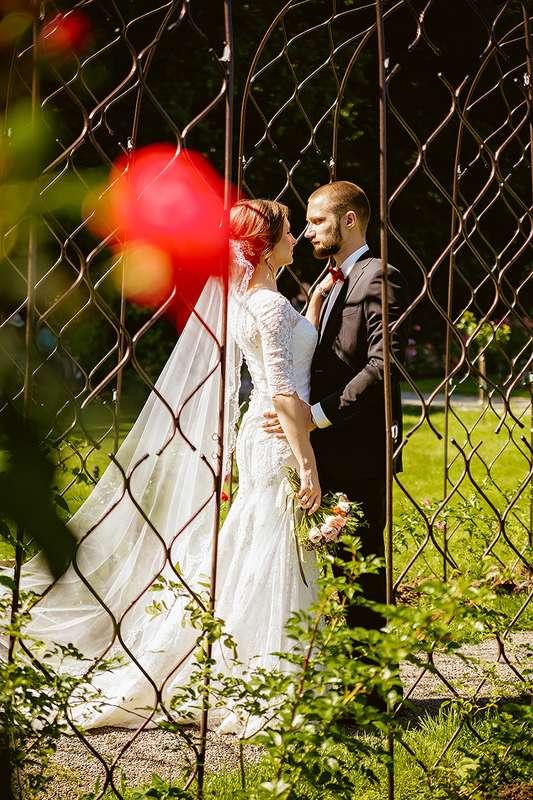 доступный фото свадьбы аси великой эти