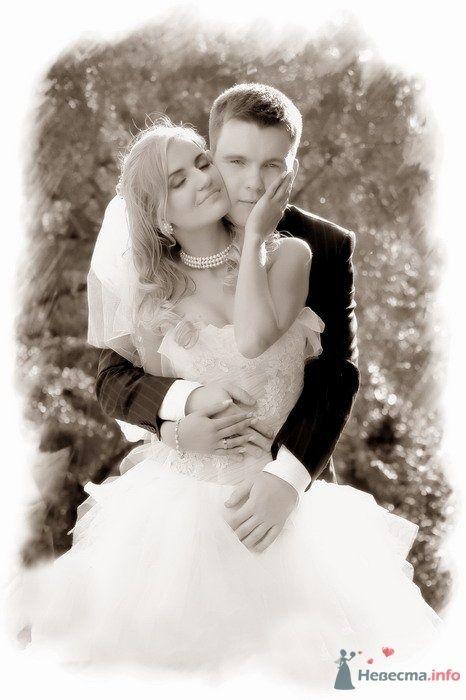 """Фото 34828 в коллекции Молодожены - Свадебное агентство """"Пятая Авеню"""""""