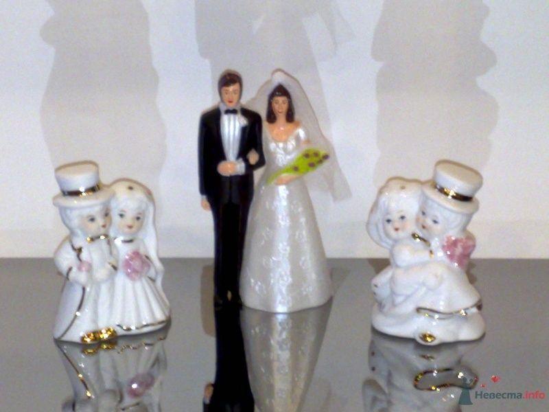 """Фото 33074 в коллекции Свадебные аксессуары - Компания """"Стильная Свадьба"""""""