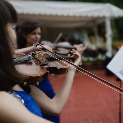 Музыканты на выездную свадебную регистрацию брака