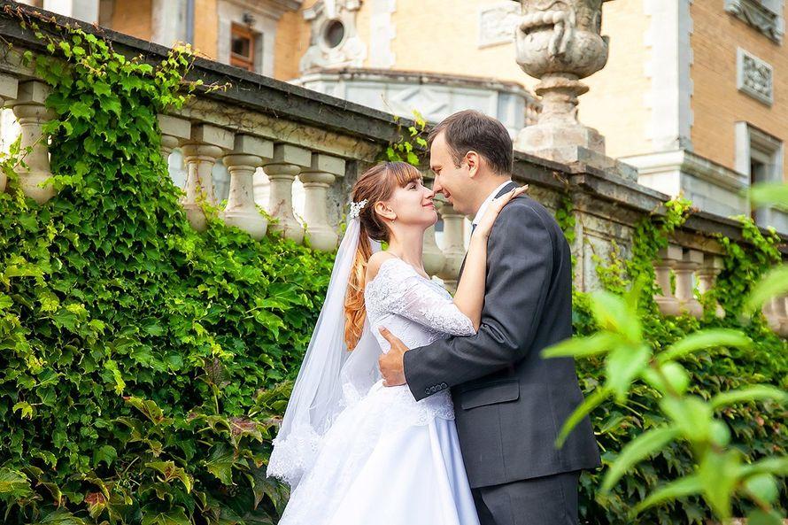 Фото 13674866 в коллекции Свадебная фотосессия в Крыму - Фотограф Наталия Романова