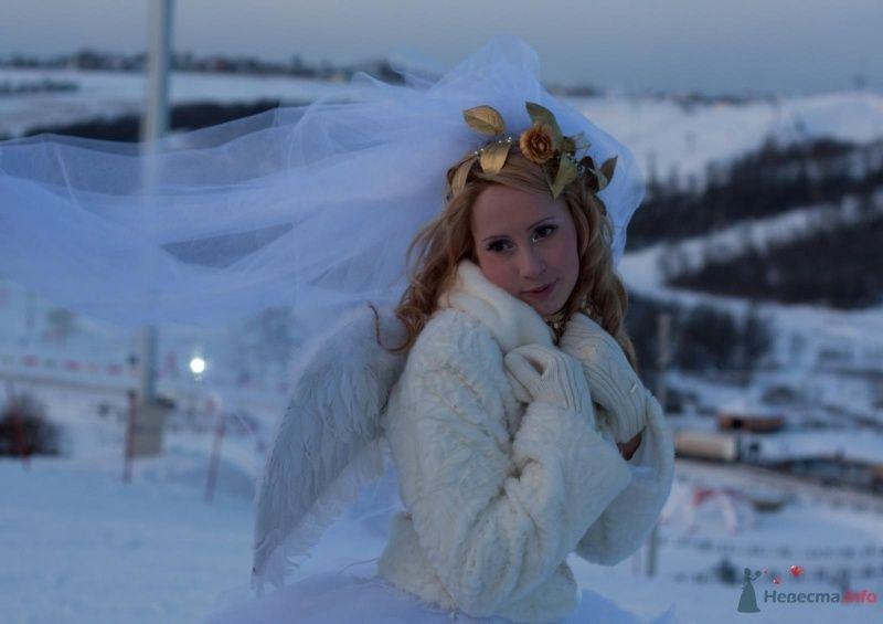 Фото 69514 в коллекции Зимний сказка или Парад невест в феврале - Стилист свадебного образа Летуновская Ольга
