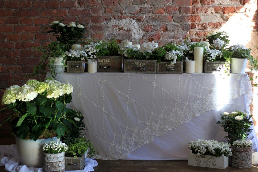 Оформление фотозоны - фото 14361122 Студия цветов и декора Aster
