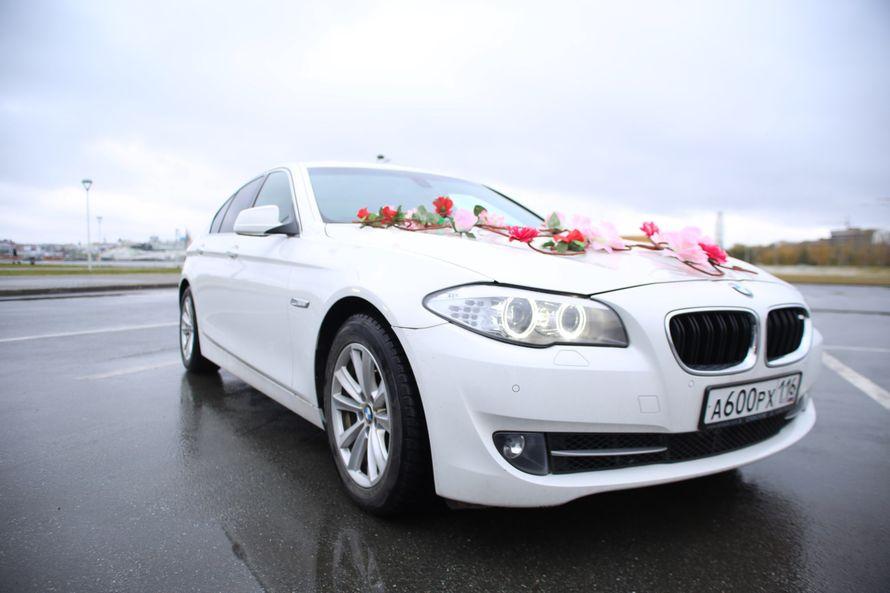 Прокат автомобилей  BMW, Kia Optima, hyundai i40